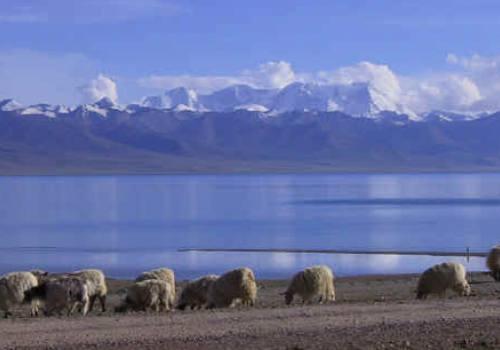 Mount Kailash Manasarovar Tour