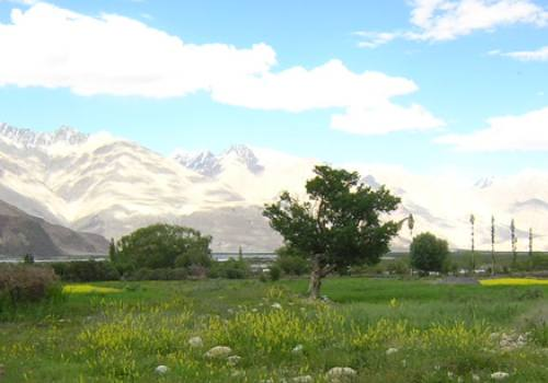 Nubra Valle Trek